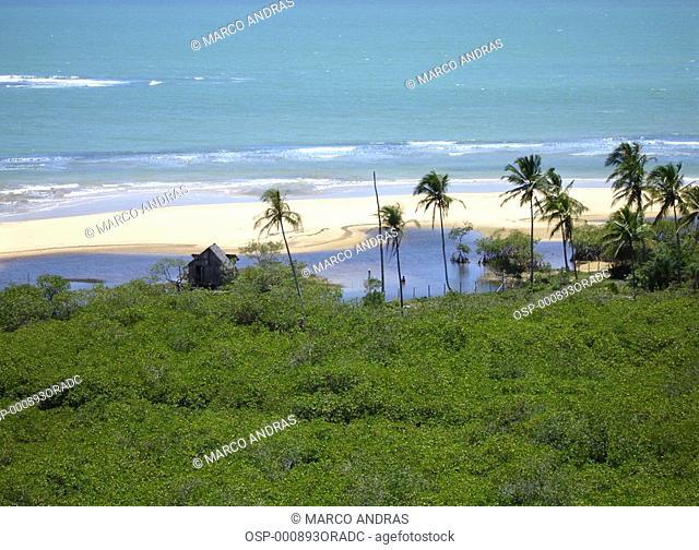 aerial view of bahia beach vegetation