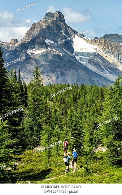Three female hikers on pathway in a mountain meadow with mountain, blue sky and clouds in the background; British Columbia, Canada