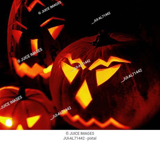 Portrait of a group of jack-o-lanterns