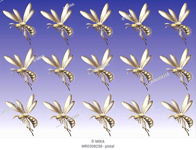 Pattern of Japanese Painting, Bee