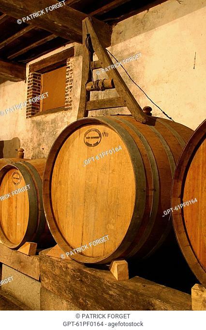 THE CELLAR, DOMAINE DE L'HERMITIERE, PRODUCTION OF CIDER, CALVADOS, APPLE JUICE, DRINKS, ORNE 61, NORMANDY, FRANCE