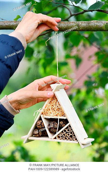 A bug hotel in the garden, Germany, city of Seesen, 15. July 2018. Photo: Frank May | usage worldwide. - Seesen/Niedersachsen/Germany