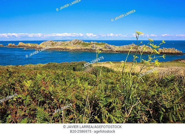 Landes Island, L'île des Landes, Pointe du Grouin, Cancale, Brittany, Bretagne, France