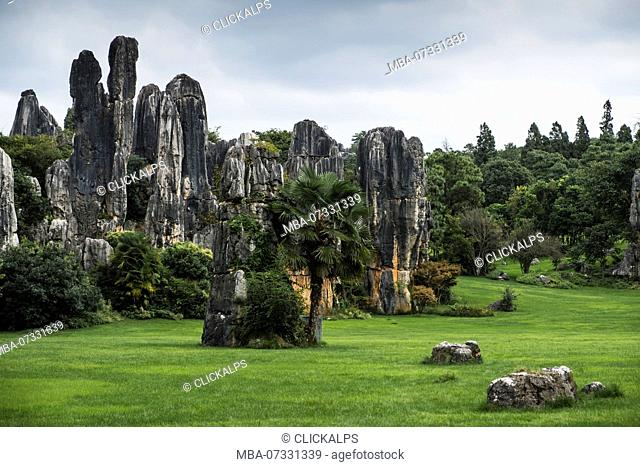 Stone Forest or Shilin, Kunming, Yunnan Province, China, Asia, Asian, East Asia, Far East