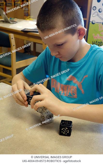 6th Grade Boy Working With Robotic Cubes, Wellsville, New York
