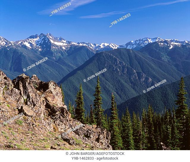 Mt  Deception top left rises above densely forested ridges and valleys and nearby rock outcrop, view south from Deer Park, Olympic National Park, Washington