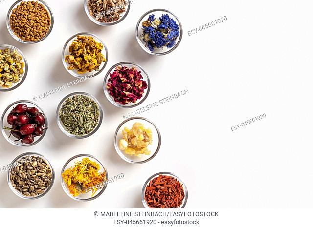 Mullein, horsetail, milk thistle, calendula and other dried herbs in bowls on a white background