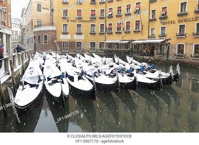 Som venetian traditional gondolas during a snowfall, Orseolo Dock, Venice, Veneto, Italy