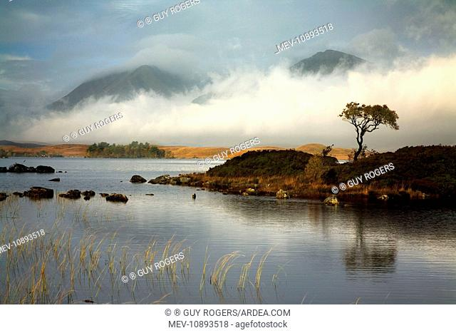 Lochan na h-Achlaise with Black Mount in the distance covered in low cloud - October. Rannock Moor - Scotland - UK