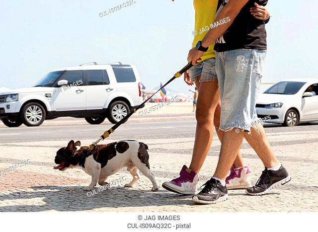 Cropped shot of young couple strolling with dog, Copacabana, Rio De Janeiro, Brazil