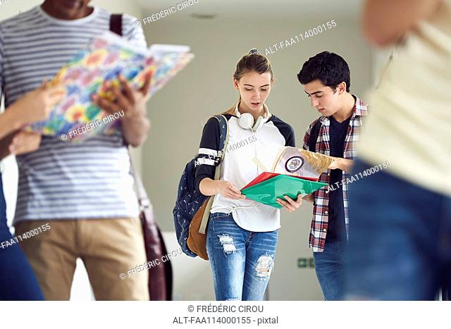 Classmates looking at textbook together in corridor