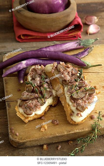 Bruschetta with mozzarella, salsiccia and long, thin aubergines