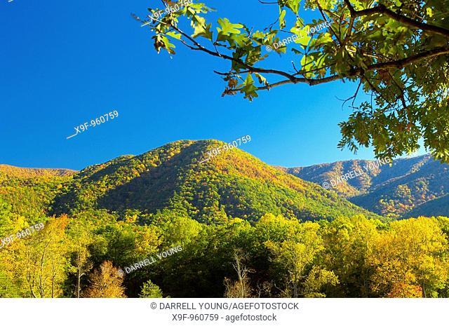 Great Smoky Mountains National Park is famous for Cades Cove's exquisite beauty  It is the most visited USA national park for that reason