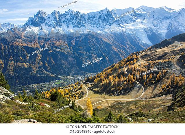 View on Chamonix and the Mont Blanc in the French Alps