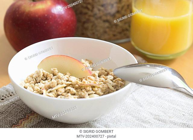 Cereal food with slice of apple in bowl, Freiburg im Breisgau, Baden-Württemberg, Germany