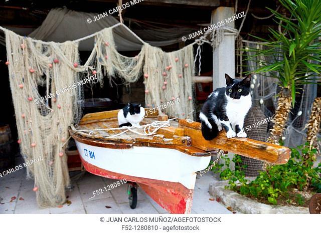 Town of Cavtat, Croatia, Adriatic Sea, Mediterranean Sea