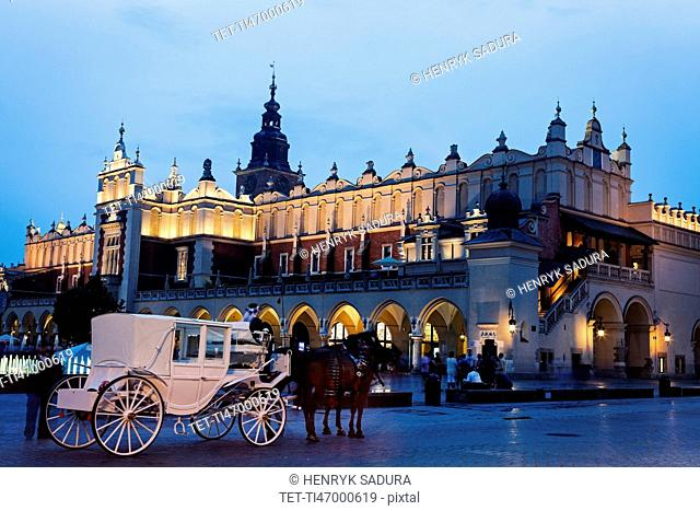 White horse carriage in front of illuminated Cloth Hall