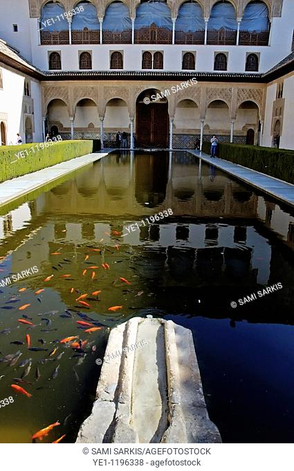 Tourists beside the goldfish pond in the Patio de los Arrayanes area of Alhambra, a 14th-century palace in Granada, Andalusia, Spain