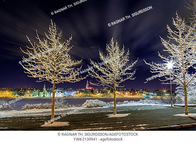 Snow covered trees, Reykjavik, Iceland