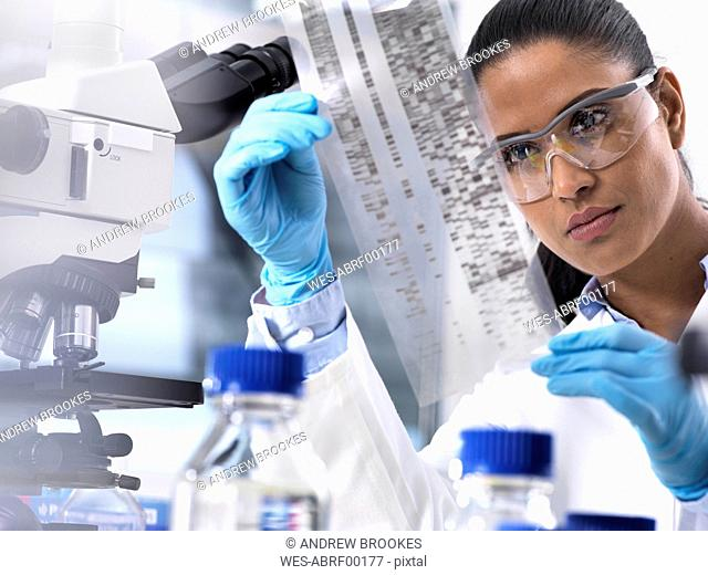Genetic Research, female scientist holding a foil with genetic code, the genetic make-up