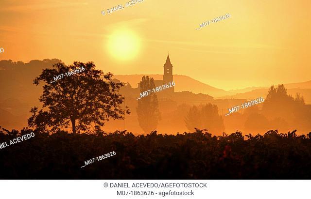 Navarrete, early light, Santiago Way, La Rioja, Spain