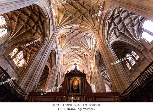 Cathedral of Santa Maria, Segovia, Castilla-Leon, Spain