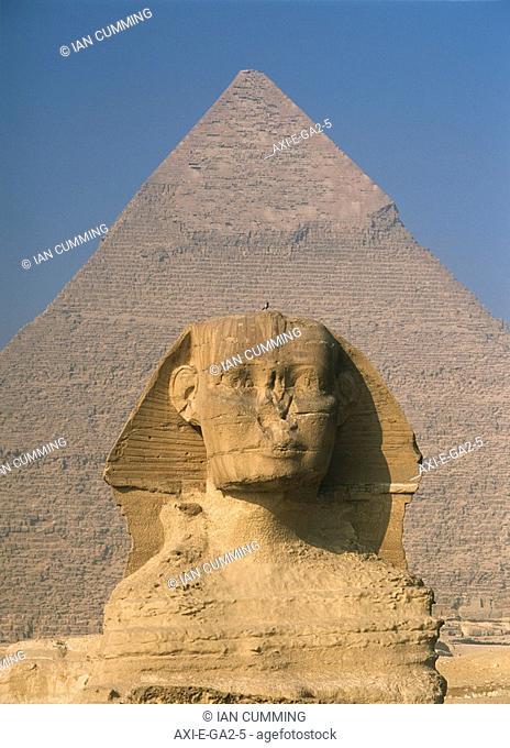 Sphinx in front of great pyramid of Chephren
