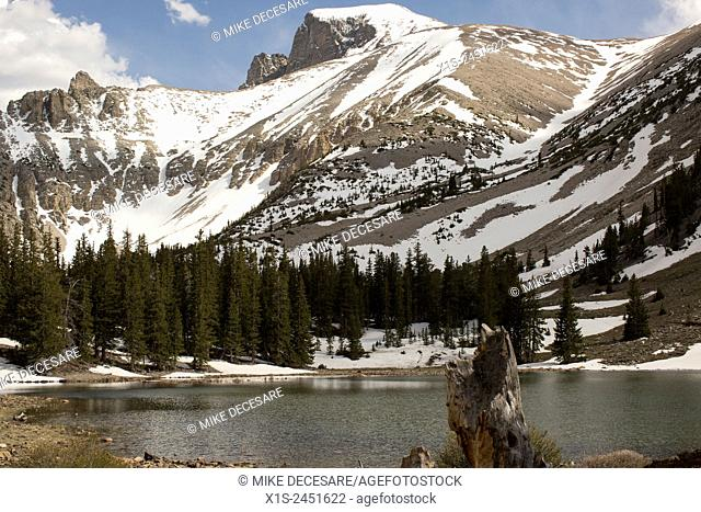 A snow covered mountain is the reward for hikers willing to reach 10,000 feet in the mountains of Great Basin National Park