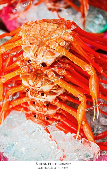 Crabs at produce market, Sokcho, Gangwon, South Korea