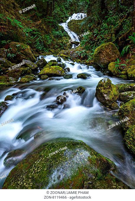 Beautiful Bunch Creek Falls in the Olympic National Park of Washington
