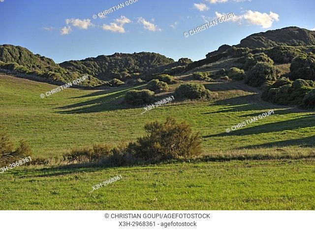 country landscape near Es Mercadal, Menorca, Balearic Islands, Spain, Europe