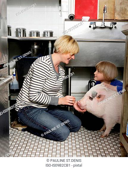 Mother and daughter sitting in kitchen stroking pet pig