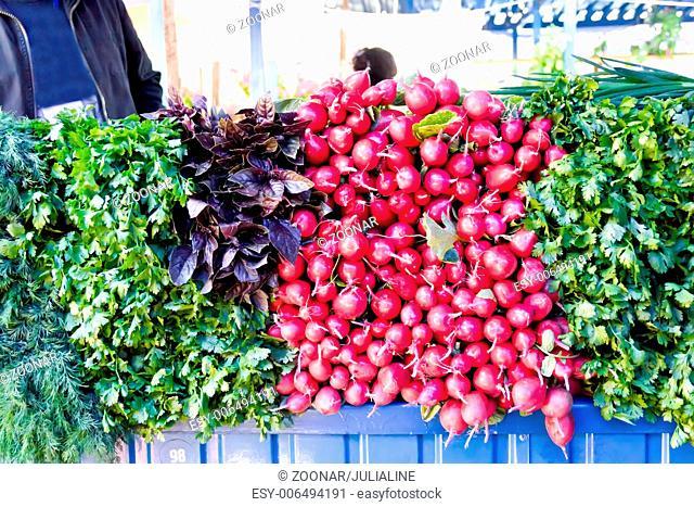 Fresh radish and foliage