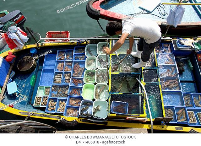 Asia, China, Hong Kong, New Territories, Saikung, fishing
