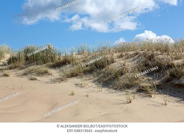 Gray Dunes's trail of Curonian Spit National Park in summer, Curonian Spit, Lithuania, Europe