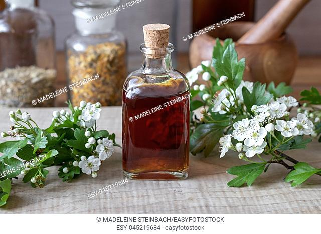 A bottle of homemade herbal tincture with fresh blooming hawthorn branches