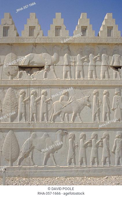 Parade of nations carving, Apadana Palace staircase, archaeological site, Persepolis, Iran, Middle East, Asia