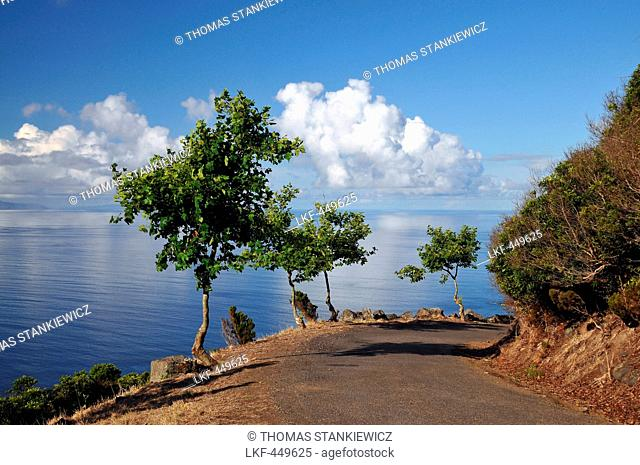 Coastal Highroad at Caldeira, South of the Island of Graciosa, Azores, Portugal