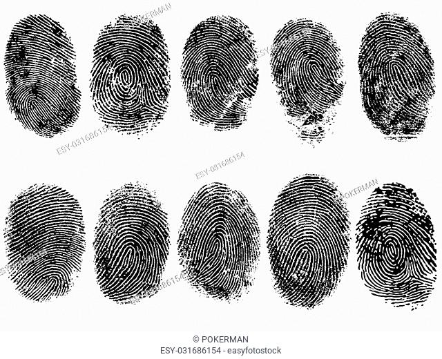 10 Black and White Vector Fingerprints - Very accurately scanned and traced ( Vector is transparent so it can be overlaid on other images, vectors etc