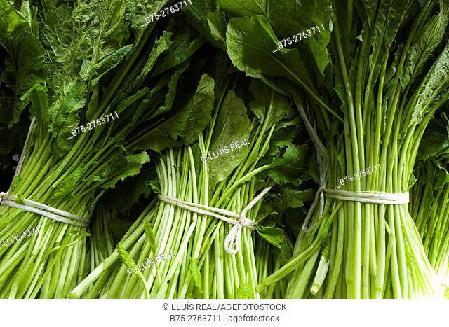 Bundles of spinach in market. Padrón, Province of La Coruña, Galicia, Spain