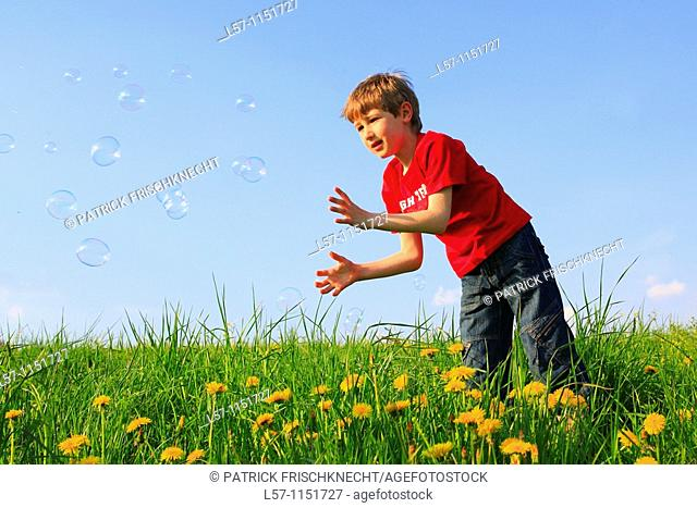 boy playing with bubbles in field of Dandelions, Zuercher Oberland, Zuerich, Switzerland