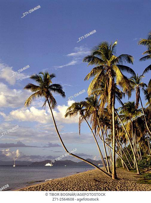 Caribbean, Nevis, Pinney's Beach,