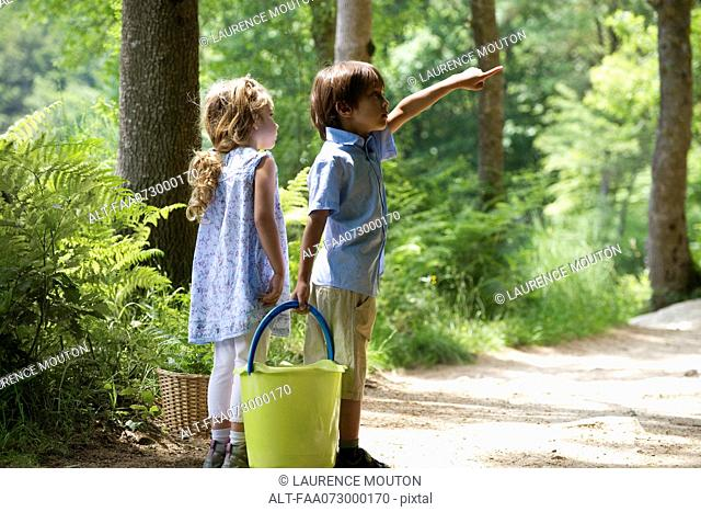Children exploring woods together