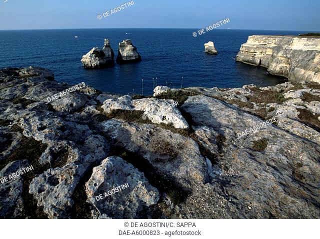 Rocky coast near Torre dell'Orso, with the Two Sisters sea stacks in the centre, Salento, Apulia, Italy