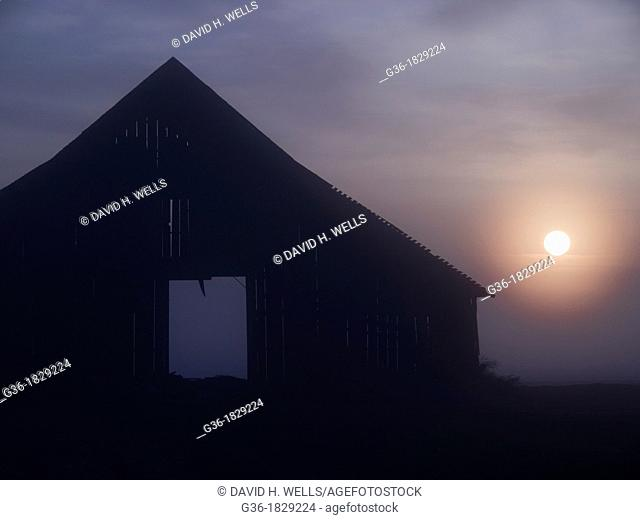 The sun rises in the open doorway of a barn in Corcoran, California, United States