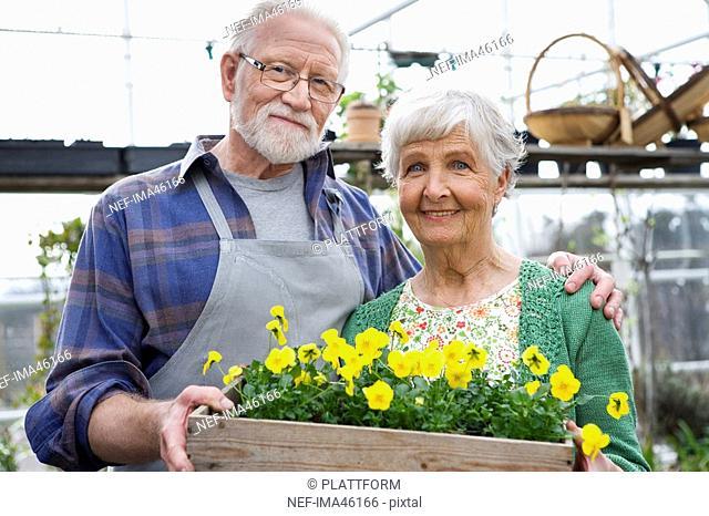 An elderly Scandinavian couple in a greenhouse Sweden