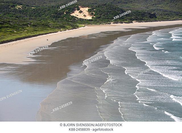 Oberon Bay Beach. Wilsons Promontory National Park. Victoria, Australia