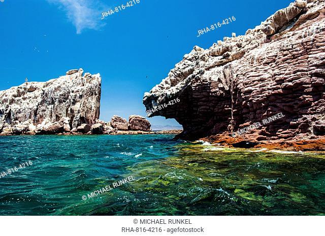 Sea lion colony at Isla Espiritu Santo, Baja California, Mexico, North America