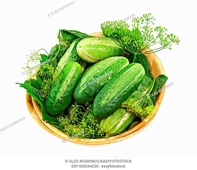 Cucumbers and dill leaves still life in wooden bowl isolated on white background. Closeup