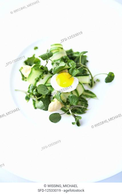 Green asparagus rolls with quail's eggs and marinated watercress